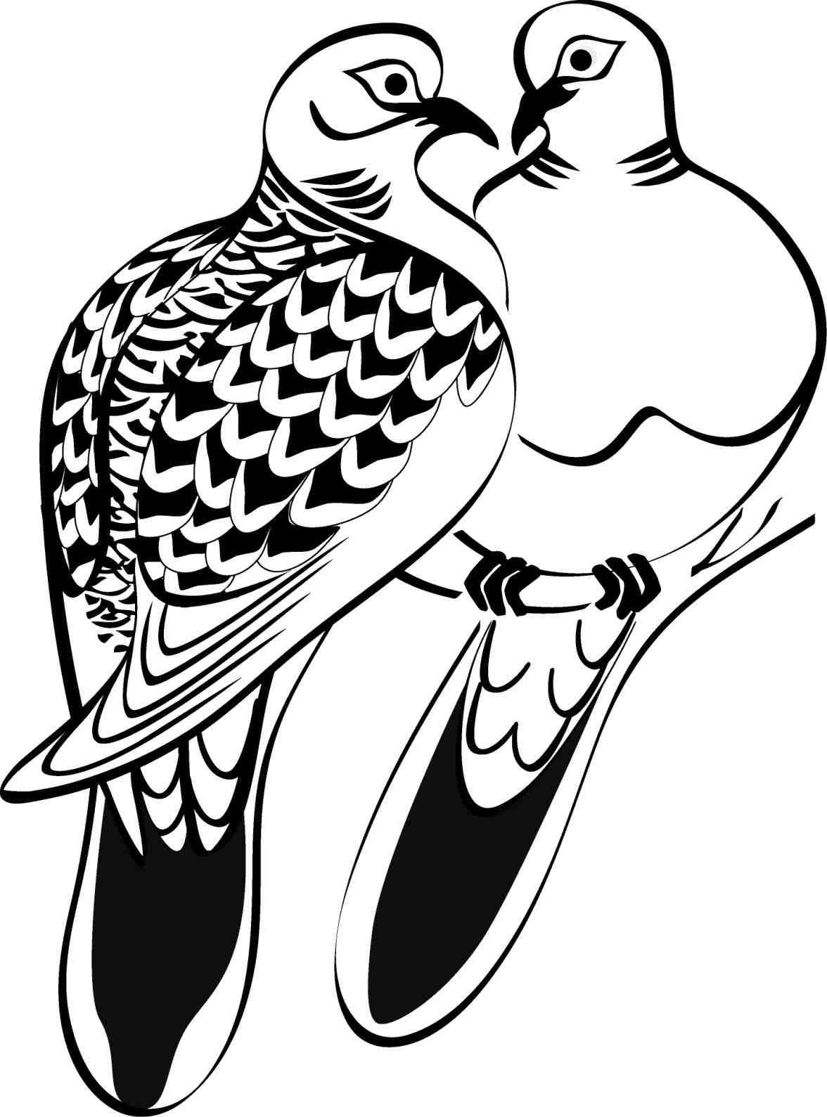 White doves drawing at free for personal for Turtle dove template