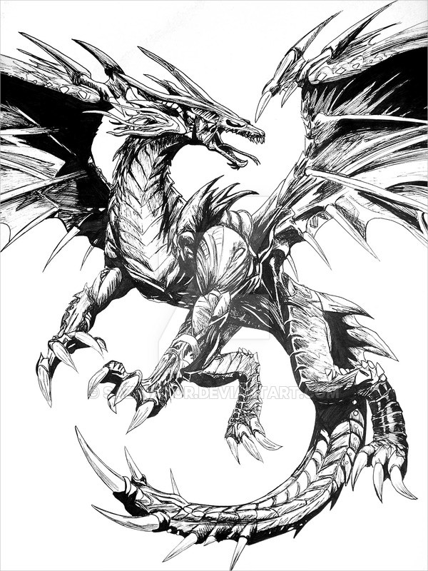 White Dragon Drawing