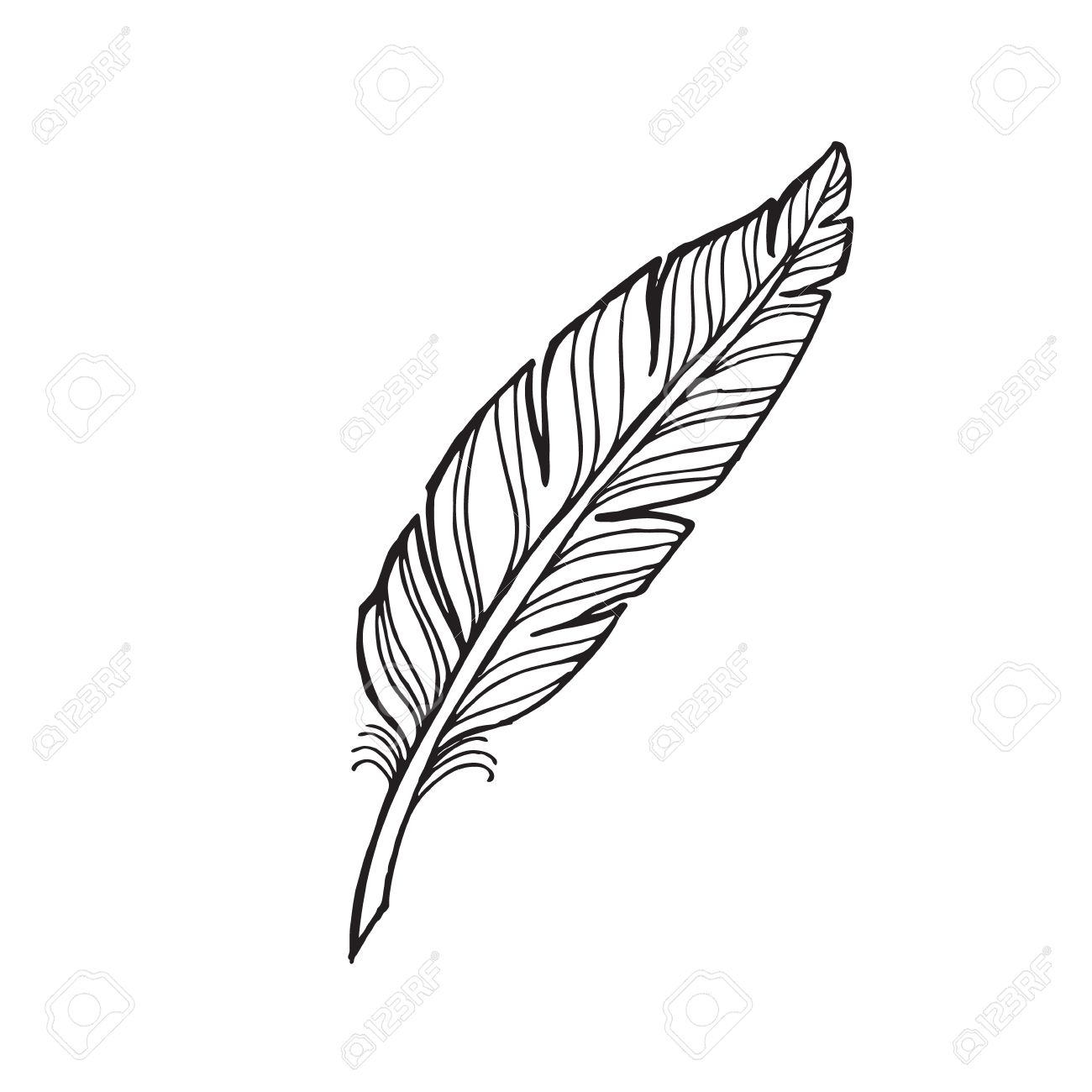 1300x1300 Black And White Feather On A White Background. Tattoo Feather