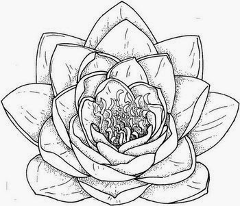 350x301 Flower Drawing