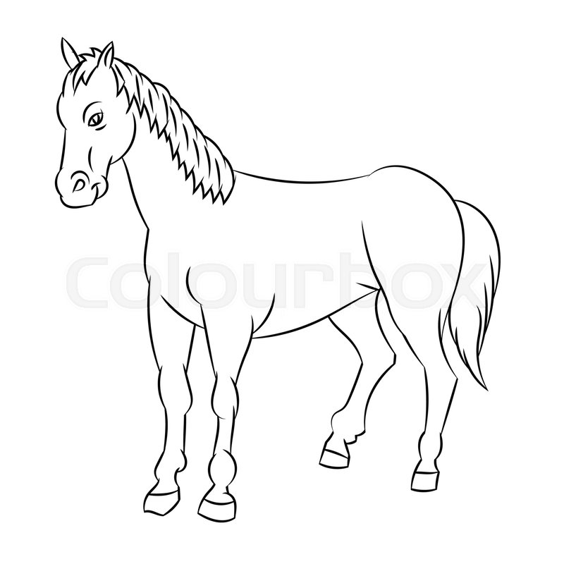 800x800 Hand Drawn Sketch Of Horse Isolated, Black And White Cartoon