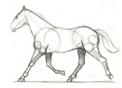400x288 Horse Drawing