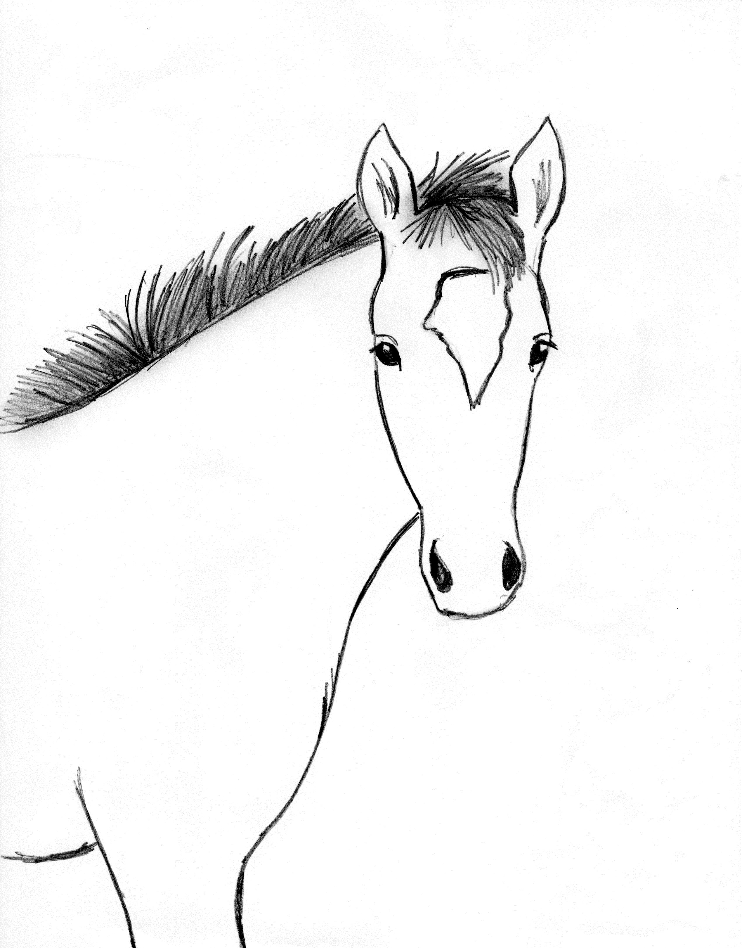 2540x3244 Horse Drawing Step By Step