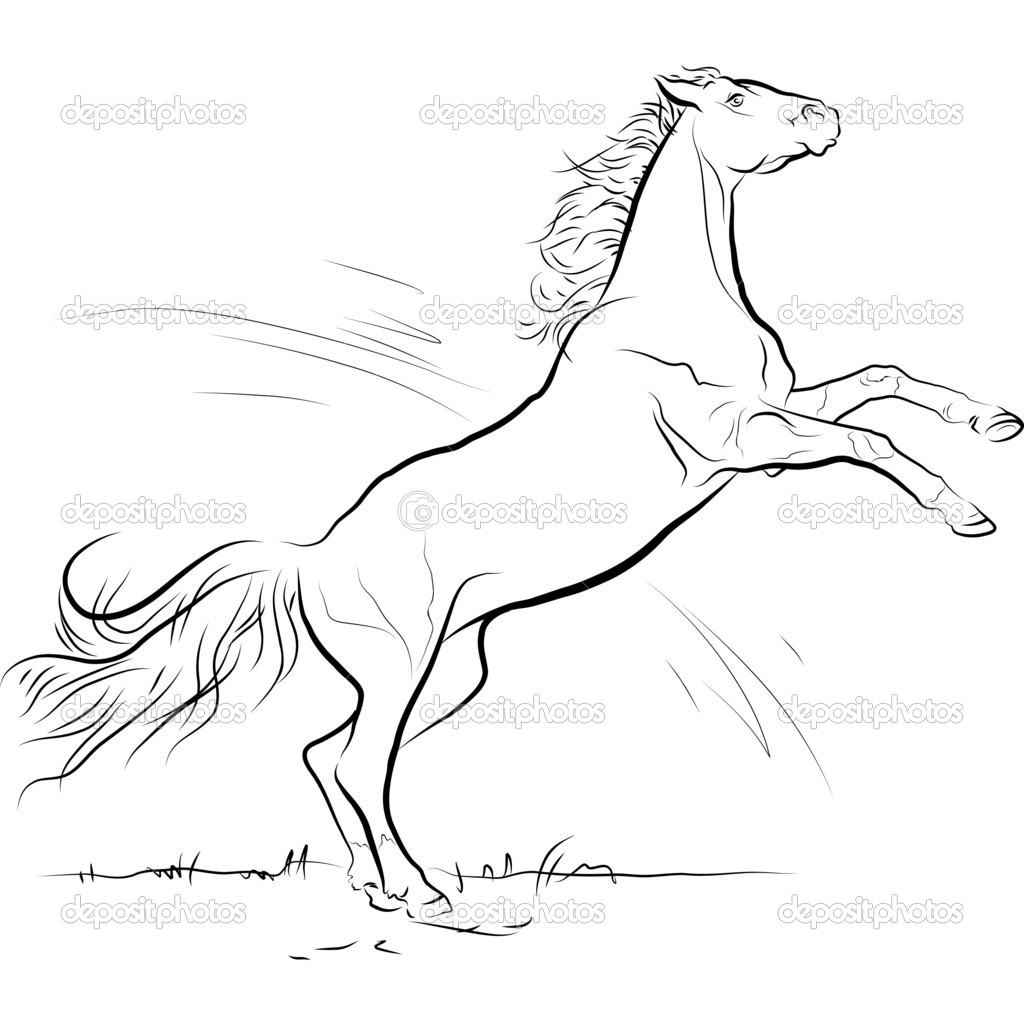 1024x1024 Black And White Drawings Of Horses Drawing Black And White Horse