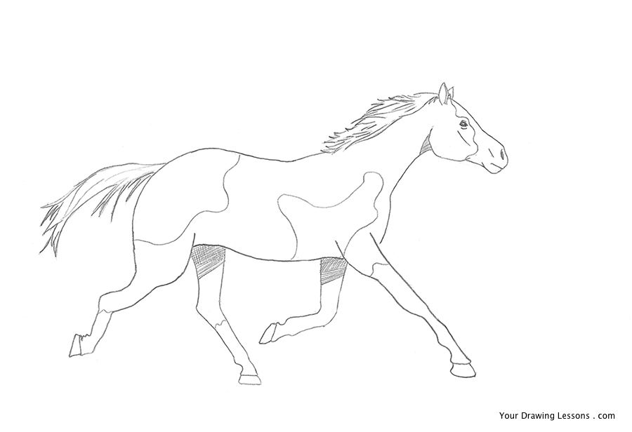 900x616 How To Draw A Galloping Horse Your Drawing Lessons