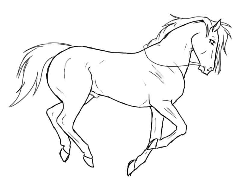 818x606 Karasus White Horse By Weltblue