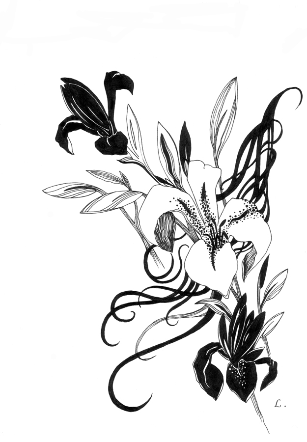 625x900 Black And White Lilies By Lisalins