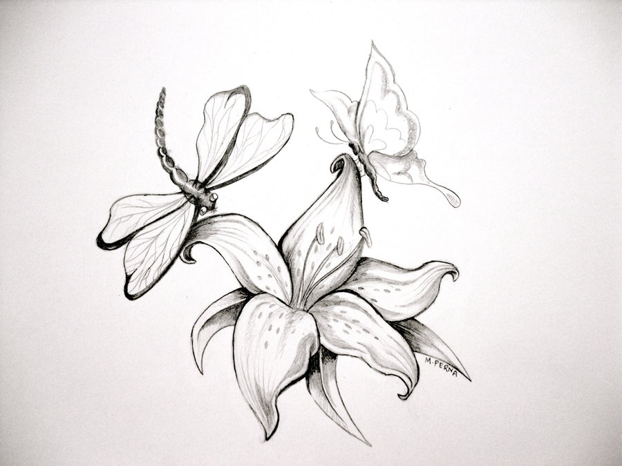 Black Line Flower Drawing : Cute simple flower drawing easy drawings flowers coriver homes