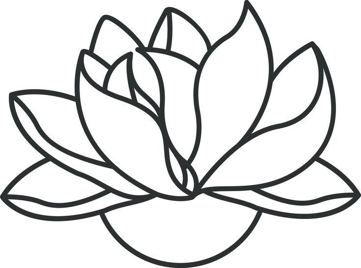 White Lotus Flower Drawing at GetDrawings.com | Free for personal ...