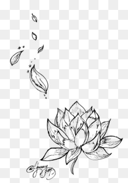 260x370 Black And White Lotus Png, Vectors, Psd, And Icons For Free