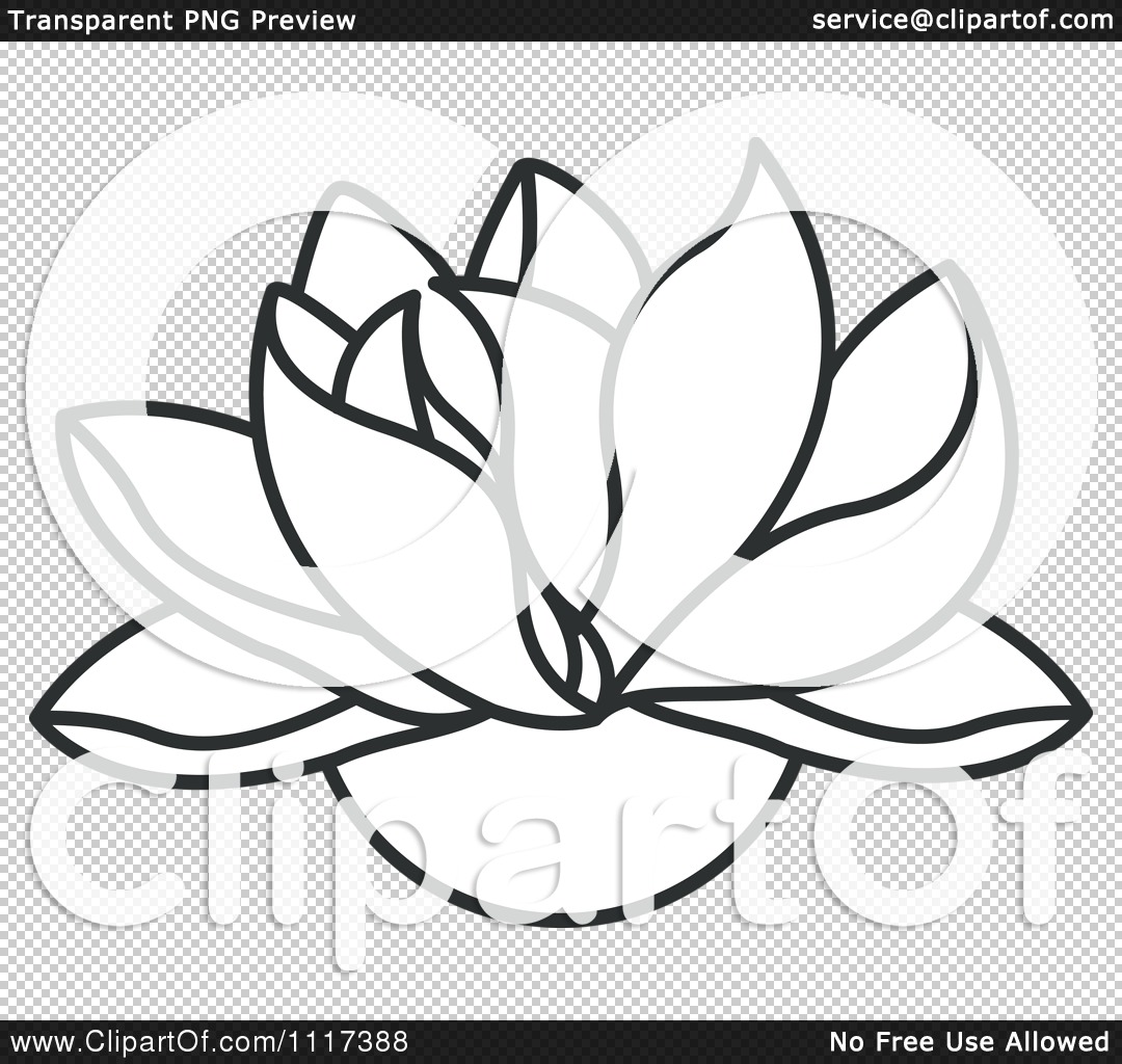 1080x1024 Clipart Of A Black And White Lotus Flower