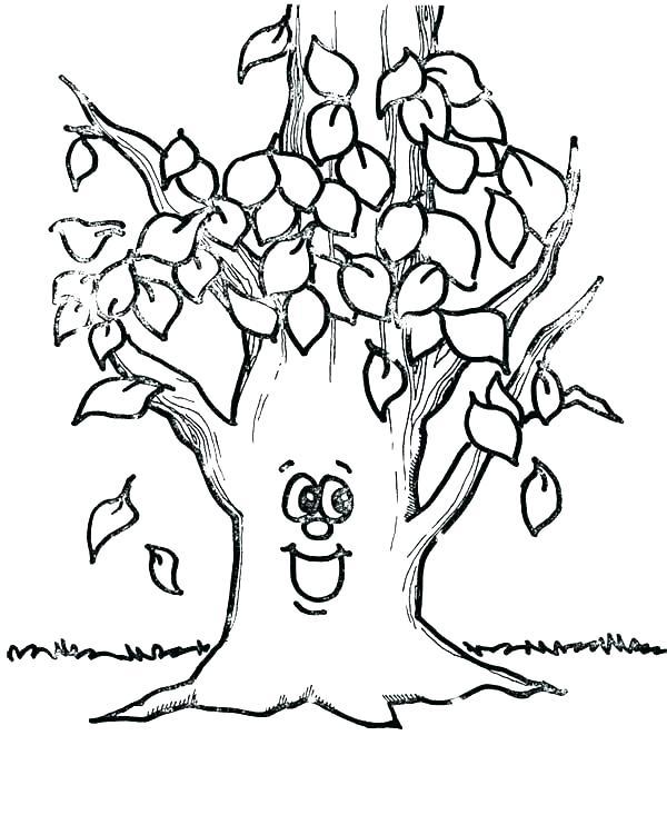 White Oak Tree Drawing At Getdrawings Com
