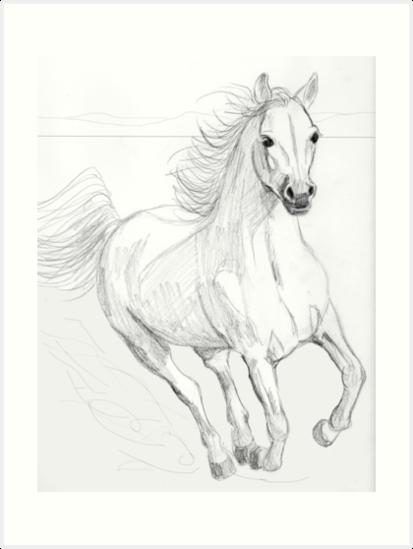 413x549 Running Arabian Horse Pencil Drawing Art Prints By Teddie