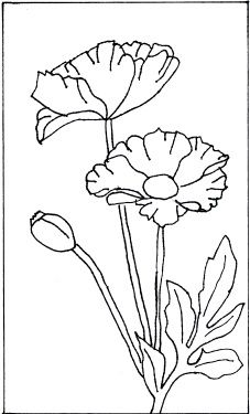 picket fence drawing. 227x375 Hollyhocks On Picket Fence This Pattern Has Been Hand Drawn Picket Fence Drawing