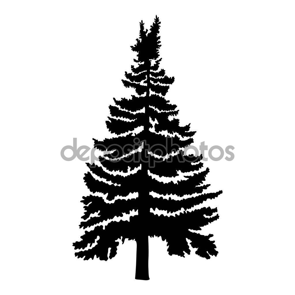 1024x1024 Drawn Fir Tree Different