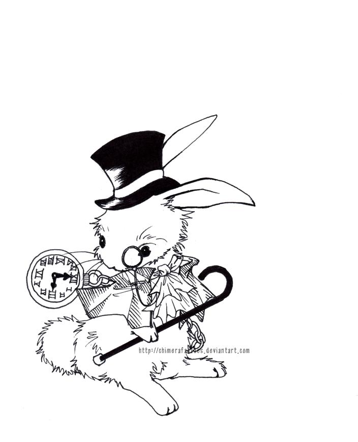 704x871 Follow The White Rabbit. By Chimerafacades