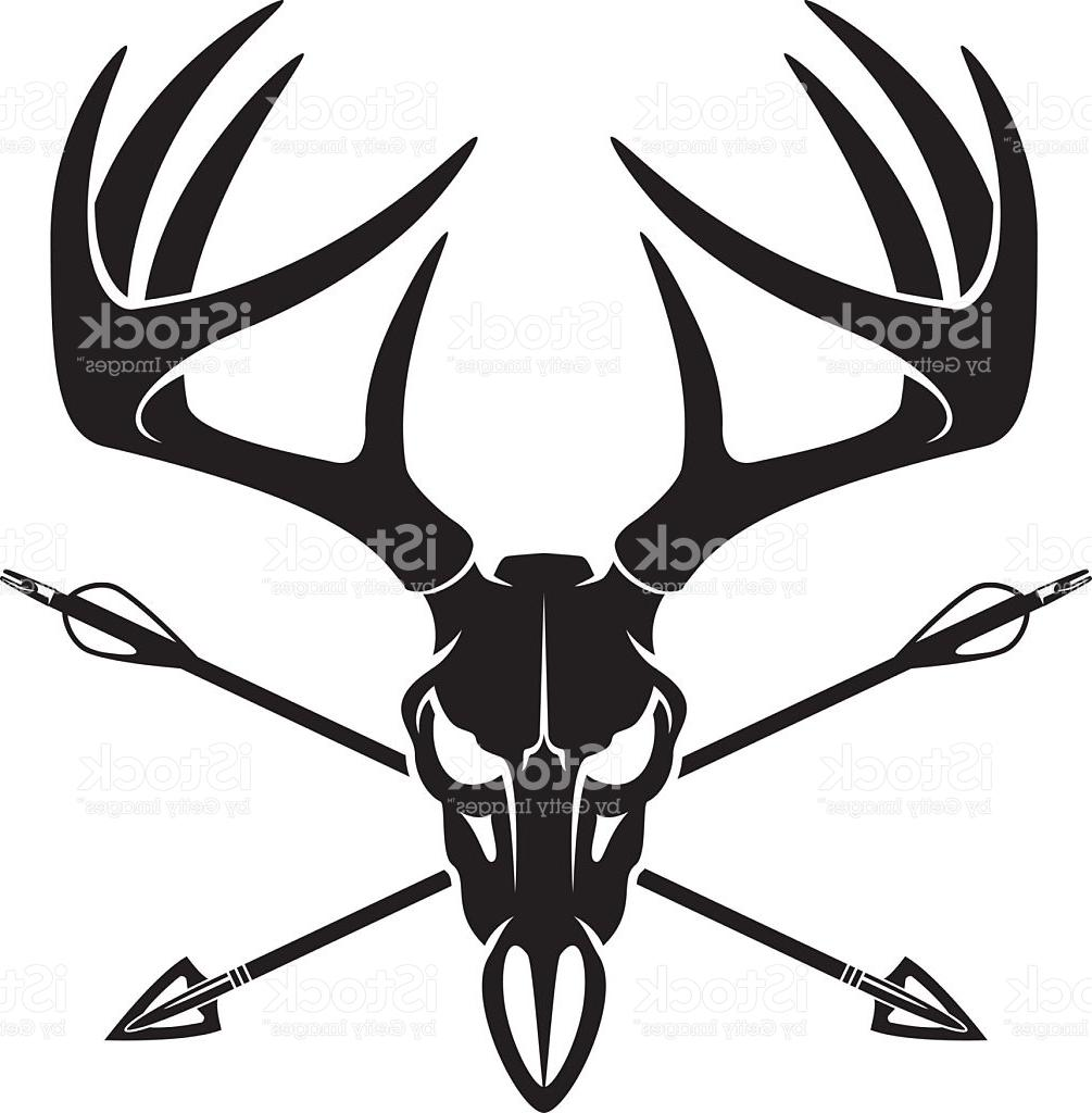 1005x1024 Best 15 Whitetail Deer Buck Skull With Crossing Hunting Arrows