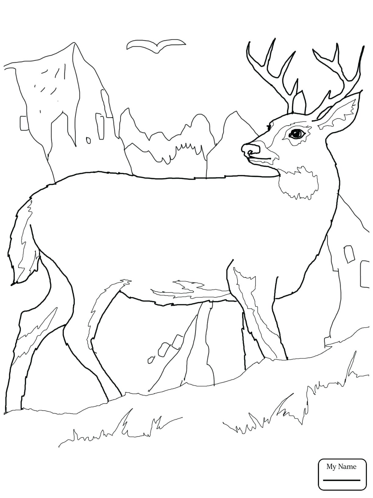 1224x1632 Coloring Coloring Page Deer