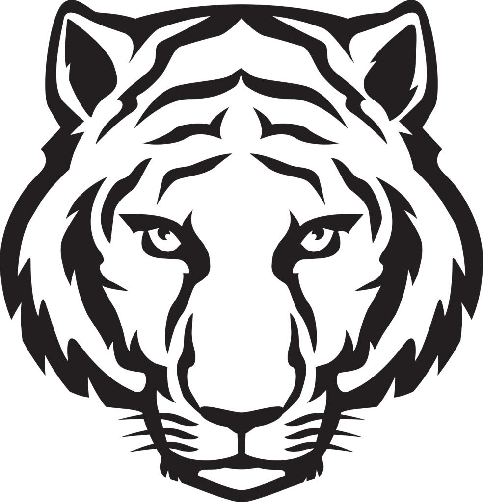 White Tiger Drawing