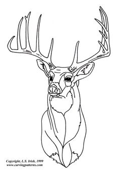 236x341 Glass Etching Stencil Of Whitetail Buck. In Category North