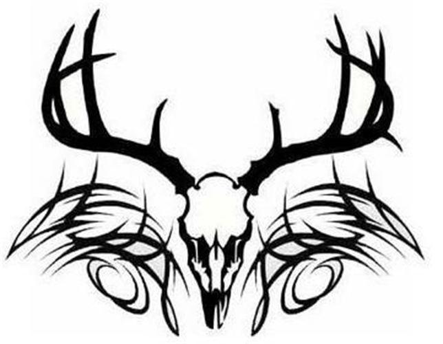 644x500 Ssckull Clipart Whitetail Deer