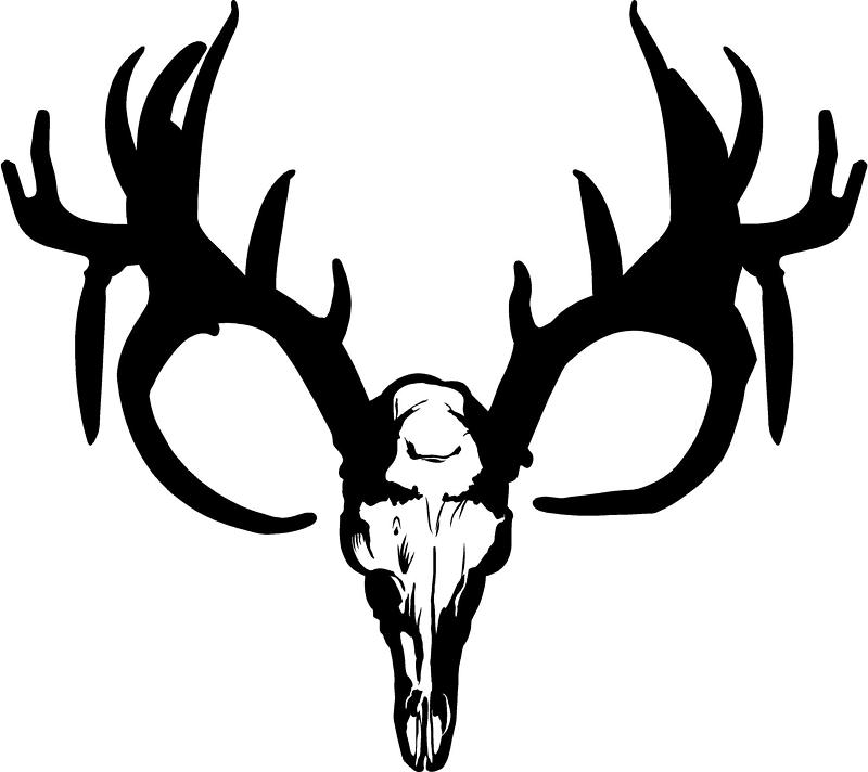 800x712 Buck Deer Skull Clip Art