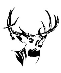 236x283 Cool black and white drawings Texas Whitetail Deer Sketches