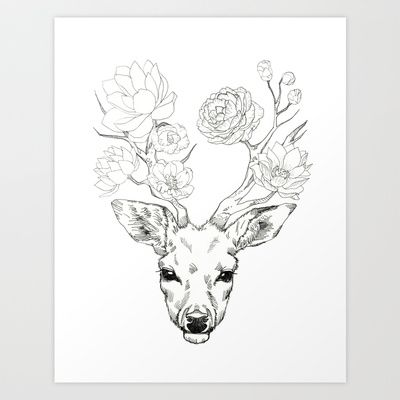 Whitetail Deer Skull Drawing