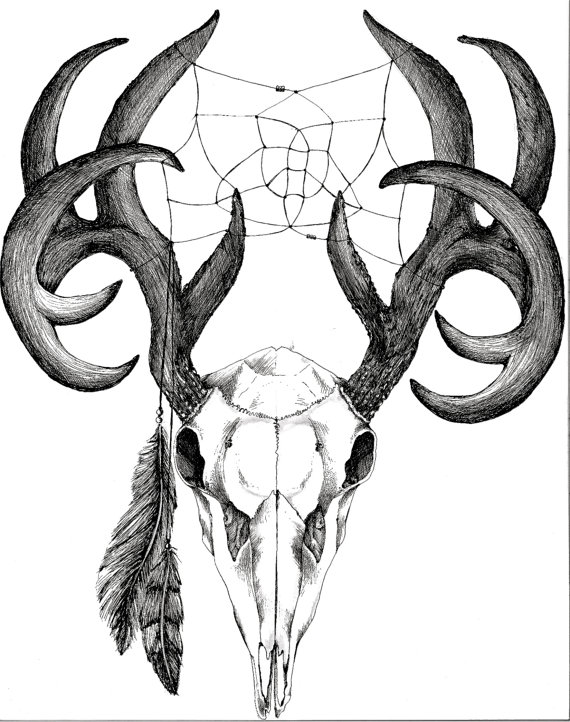 570x722 White Tail Deer Skull With Weaving And Feathers