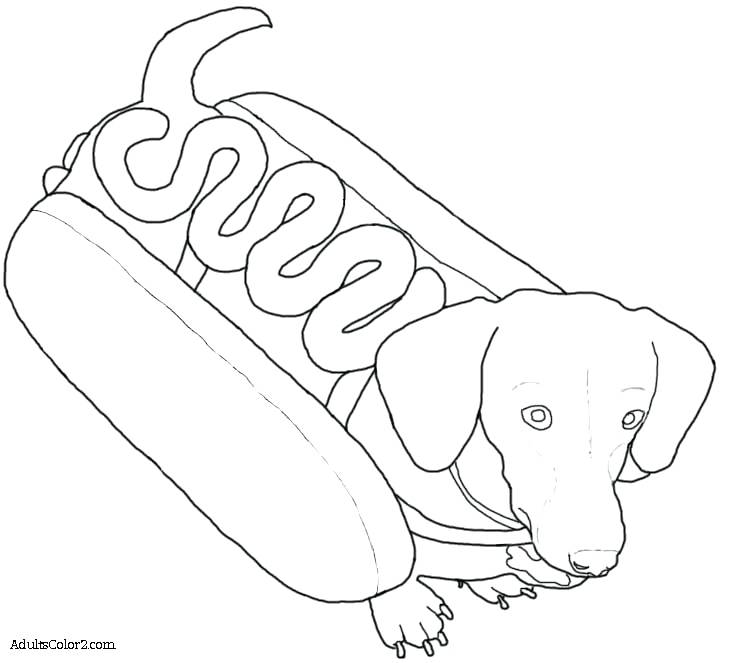 732x663 Dachshund Coloring Page Art Of Dachshund Single Coloring Page