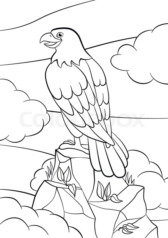 565x800 Coloring Pages. Wild Birds. Cute Eagle Sits On The Rock And Smiles
