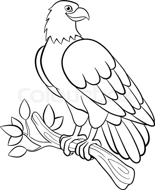 653x800 Coloring Pages. Wild Birds. Cute Smiling Eagle Sits On The Tree