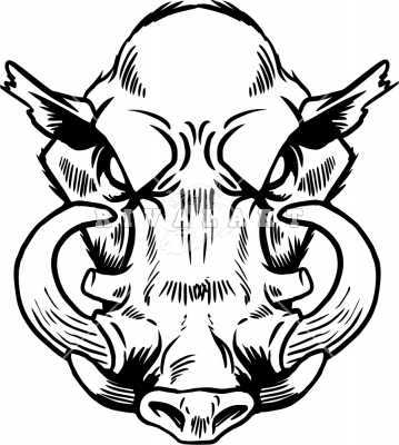 359x400 Wild Boars Head