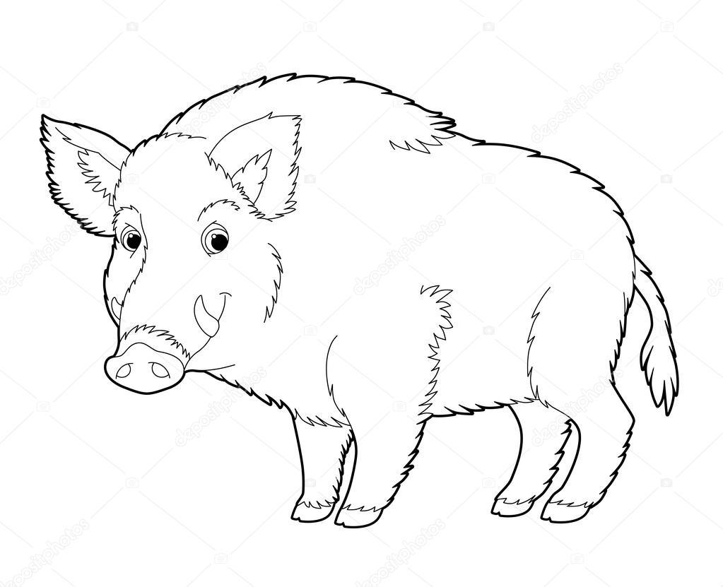 1023x831 Cartoon Animal