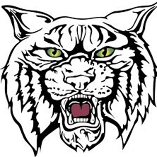 500x500 Wildcat Football