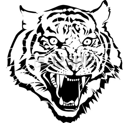 450x414 Wildcat Stock Photos. Royalty Free Business Images
