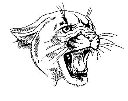 421x332 Wildcat
