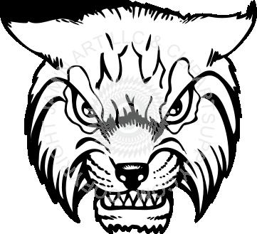 361x329 Wildcat Head