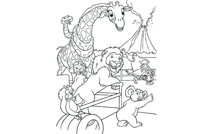 720x460 Wild Kratts Coloring Pages Wild Coloring Pages Online Animals Wild