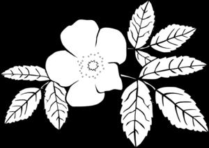 300x213 Rose Flower Clip Art