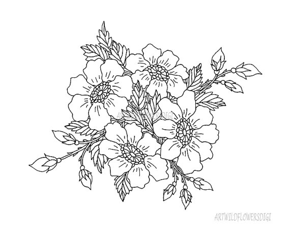 570x456 Wild Rose Digital Stamp Amp Coloring Pages By Artwildflowersdigi