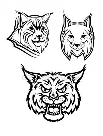 342x450 Wildcat Stock Vectors, Royalty Free Wildcat Illustrations