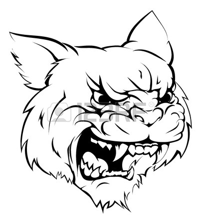 Wildcats Drawing