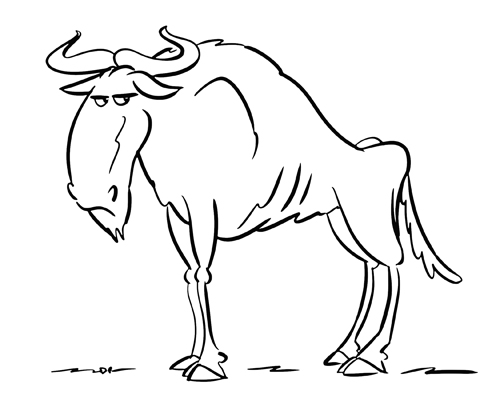 500x400 How To Draw A Wildebeest Drawing