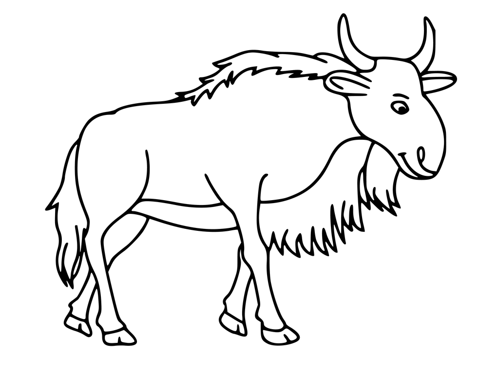1024x768 How To Draw A Wildebeest Drawing