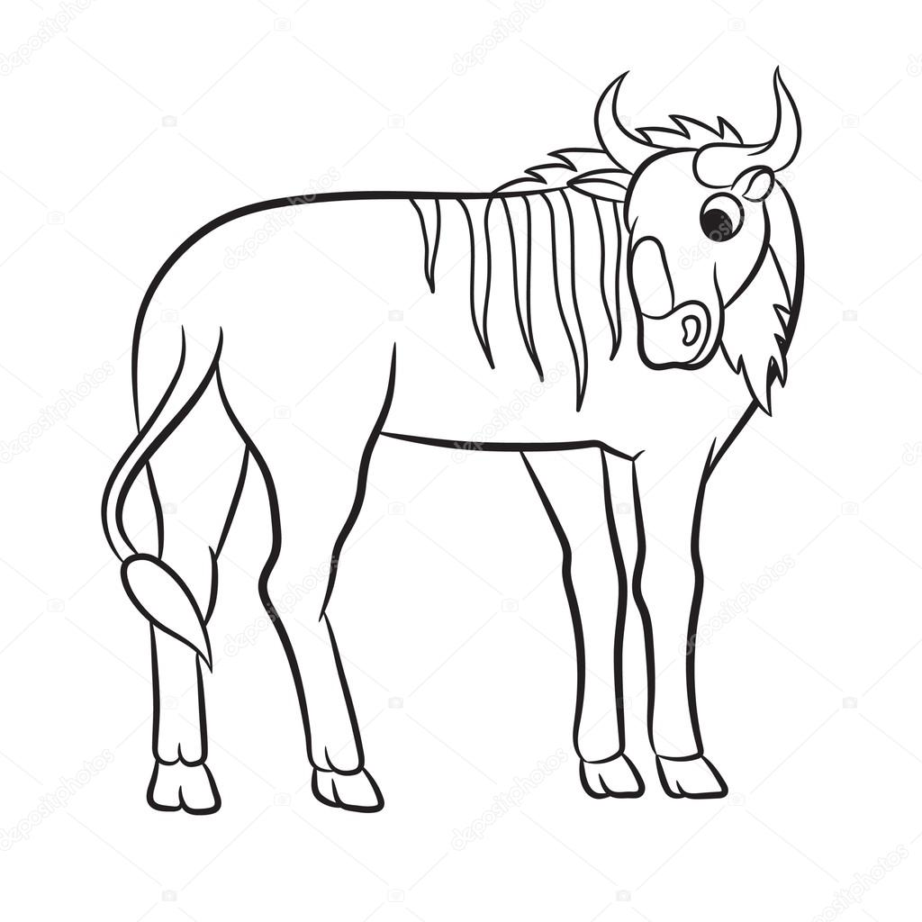 1024x1024 Illustration Of A Wildebeest Stock Vector Arnica83