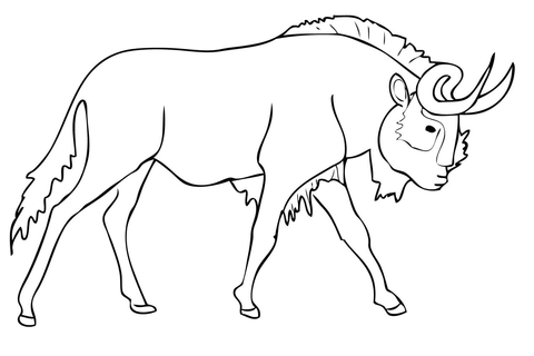 480x320 Black Wildebeest (Gnu) Coloring Page Free Printable Coloring Pages