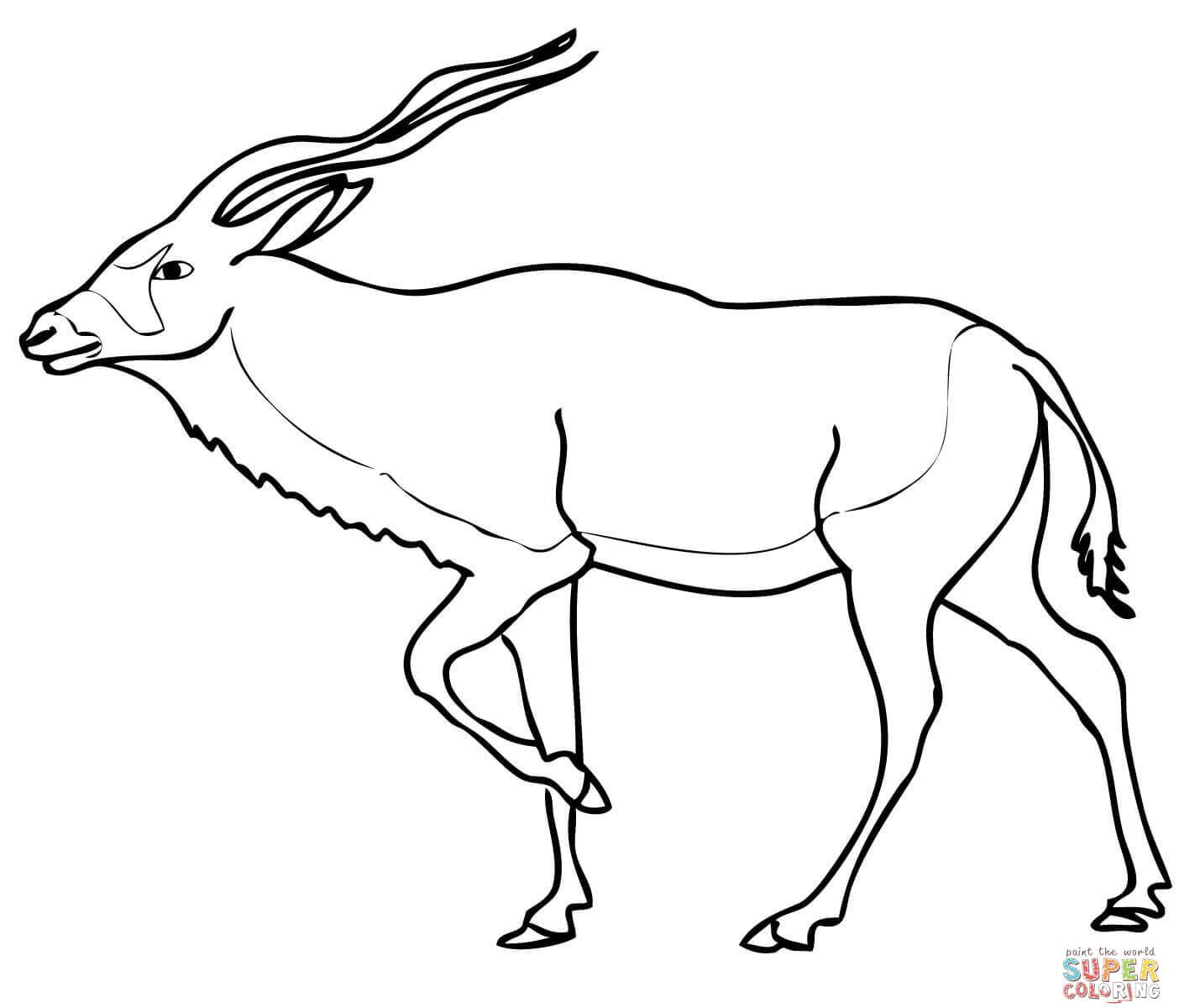 1404x1200 Wildebeest Coloring Sheet Coloring Pages
