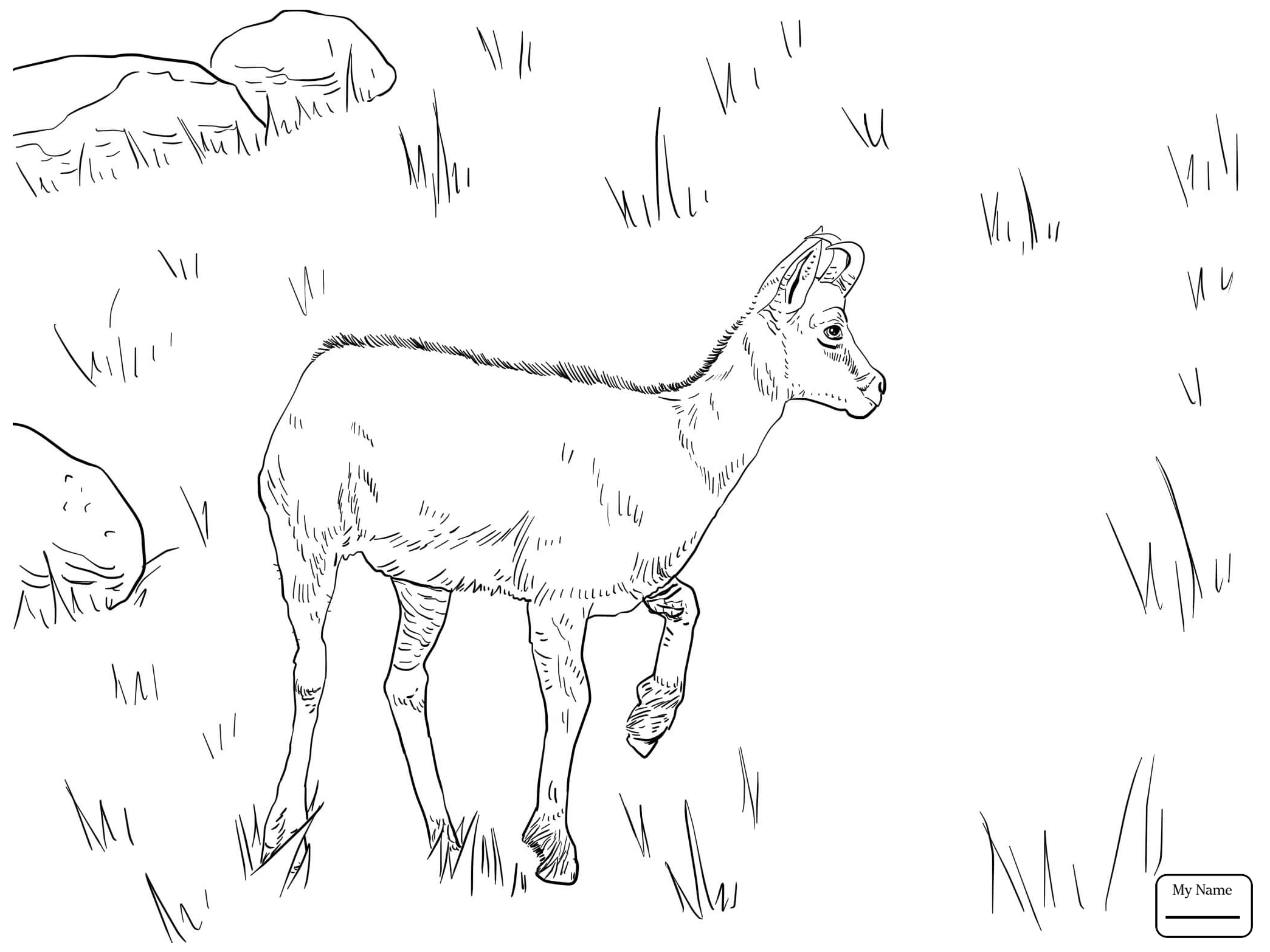 2089x1566 Antelopes Realistic Blue Wildebeest Mammals Coloring Pages