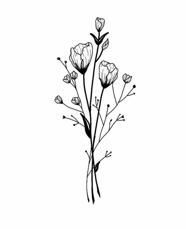 Flower Bouquet Line Drawing : Wildflower bouquet drawing at getdrawings free for